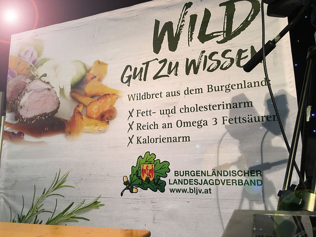 Werbeagentur Wien Burgenland ideas4you