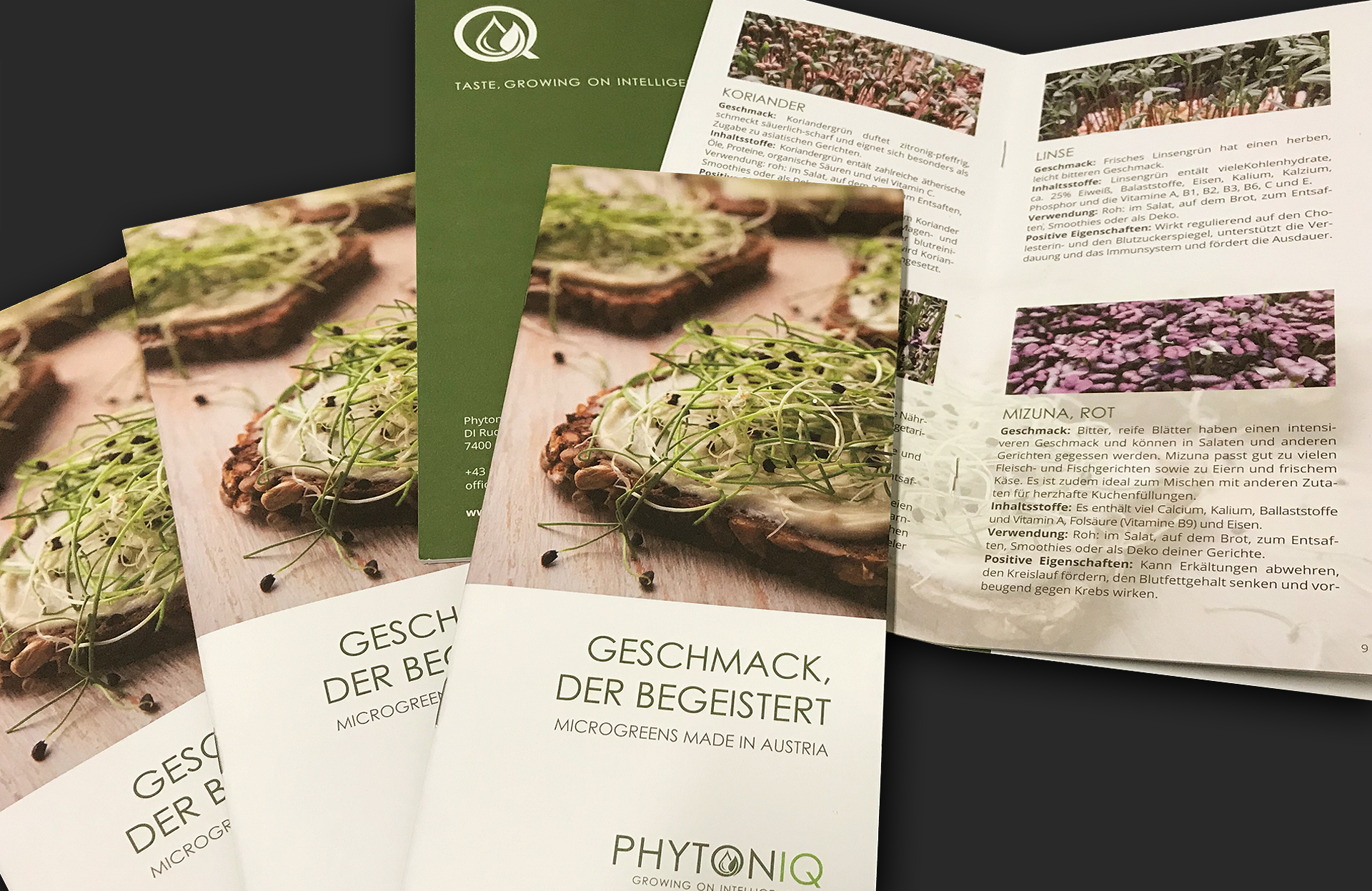 Werbeagentur Wien ideas4you Folder Phytoniq